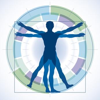 バレエの股関節、バレエの膝、甲の出し方、バレエの仕組みを識るバレエアナトミー